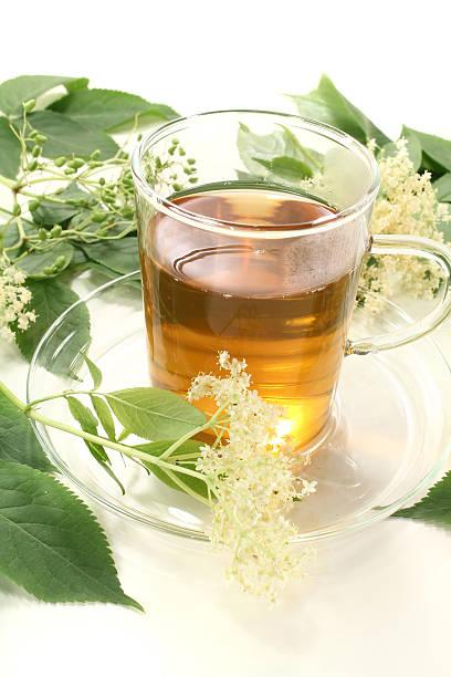 Holunderblüten-Tee – Foto