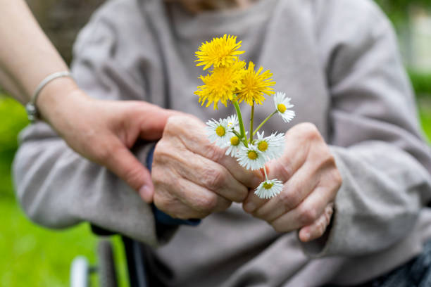 Elderly care - hands, bouquet Close up picture of elderly woman with dementia holding flower bouquet given by caretaker - hands paraplegic stock pictures, royalty-free photos & images