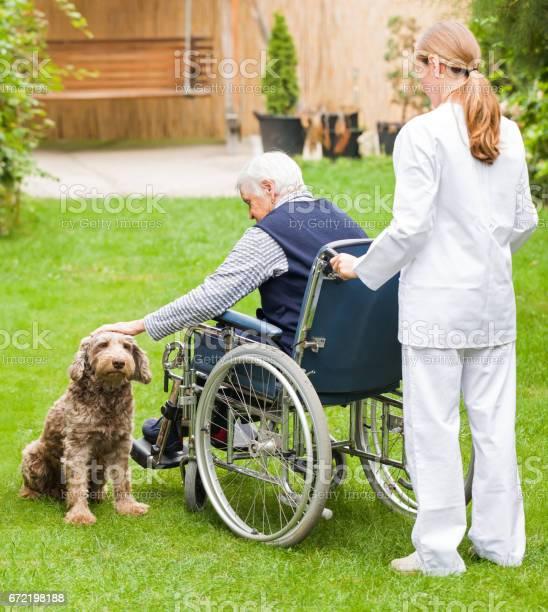 Elderly care picture id672198188?b=1&k=6&m=672198188&s=612x612&h=yzehaorh6 fh5ggwt7ykbruateopzi9pphy0pruo8w8=