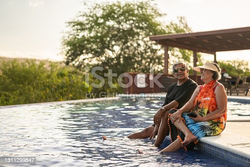 istock Elderly couple in the pool of the summerhouse 1311299847