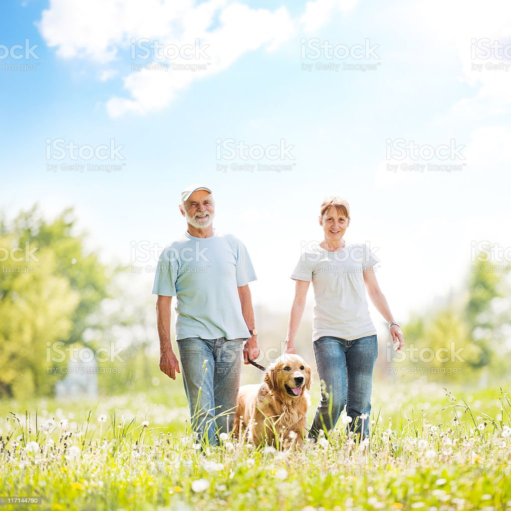 Elderly couple walking a dog in the park. royalty-free stock photo