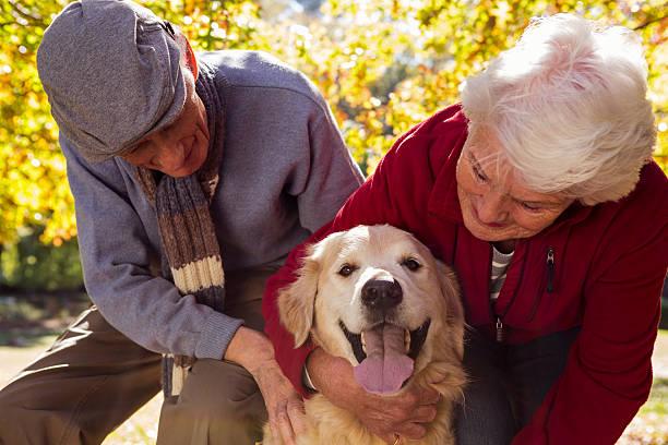 Elderly couple with their pet dog picture id636099664?b=1&k=6&m=636099664&s=612x612&w=0&h=fbhbojl5ke boihuu2rwy9hoa1bjtwdx1ssogxmh qs=