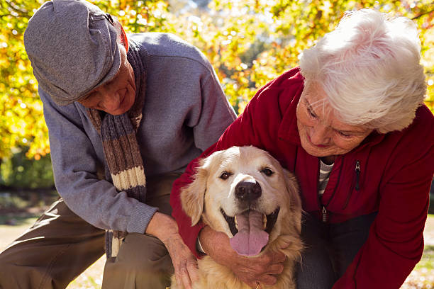 Elderly couple with their pet dog stock photo