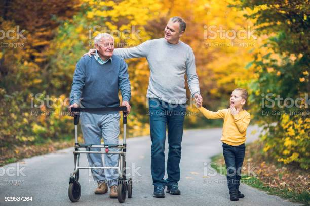 Elderly father adult son and grandson out for a walk in the park picture id929537264?b=1&k=6&m=929537264&s=612x612&h=ihveb9cxlthhh9lmzvs3gyopy pfyoe 7mp2pep2iyg=
