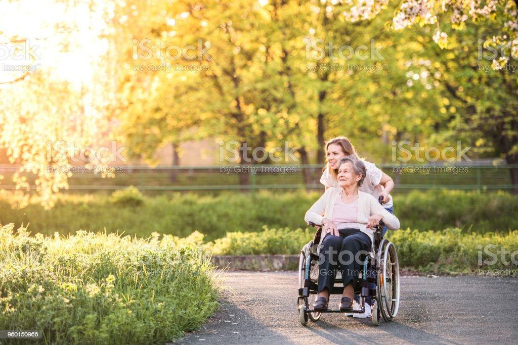 Ältere Großmutter im Rollstuhl mit Enkelin im Frühling Natur. – Foto
