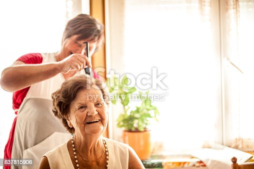 istock Elderly Home care service by a Caregiver 637815906