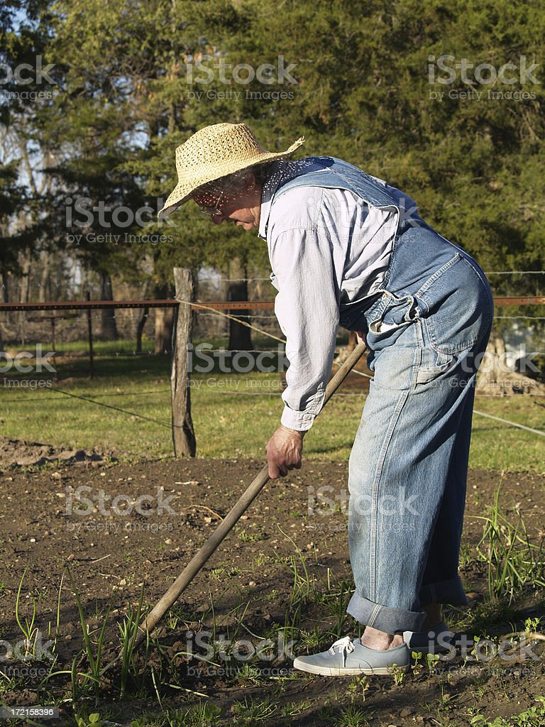 Elderly lady in Garden royalty-free stock photo