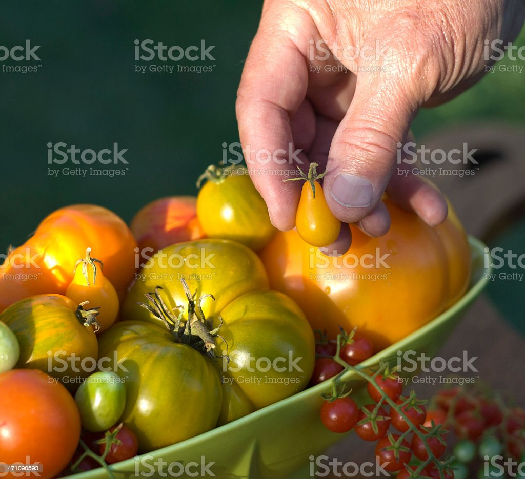 Elderly Making Healthy Choices royalty-free stock photo