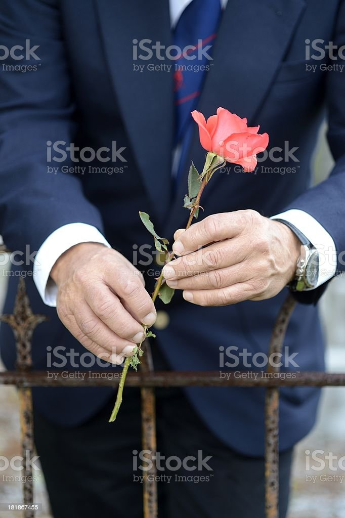 Elderly man holding rose in cemetery front view royalty-free stock photo