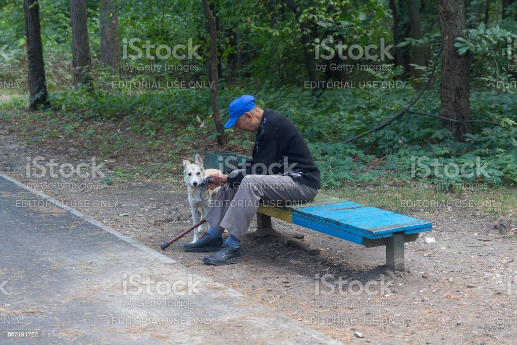 Elderly man in the park with a dog stock photo