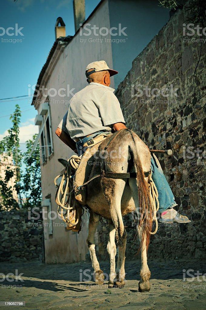 Elderly man on a donkey royalty-free stock photo