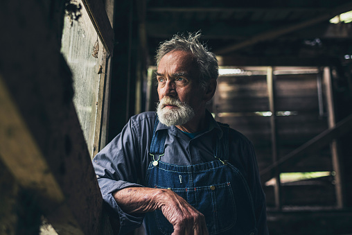 Elderly man staring out of a rustic wooden window