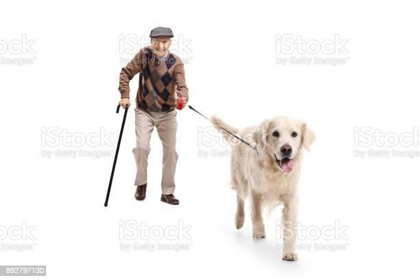 Elderly man walking a dog picture id892797130?b=1&k=6&m=892797130&s=612x612&h=sjg6wyu88 yrpi8ts pnfaftvtnv8bctmpfekf1yneg=