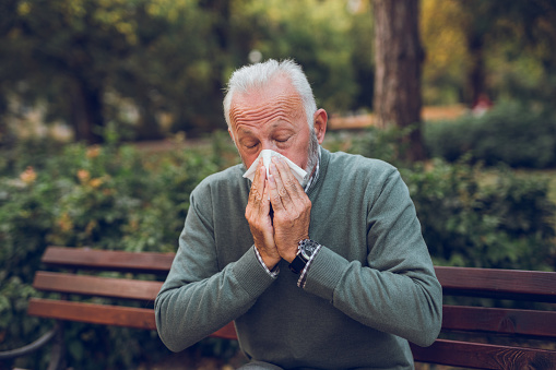 Elderly man with cold blowing his nose in the park