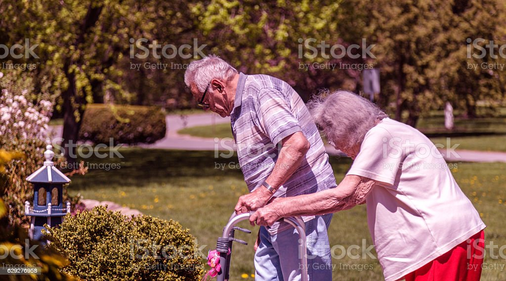 Elderly Senior Adult Married Couple Walking Slowly Gripping Orthopedic Walker stock photo
