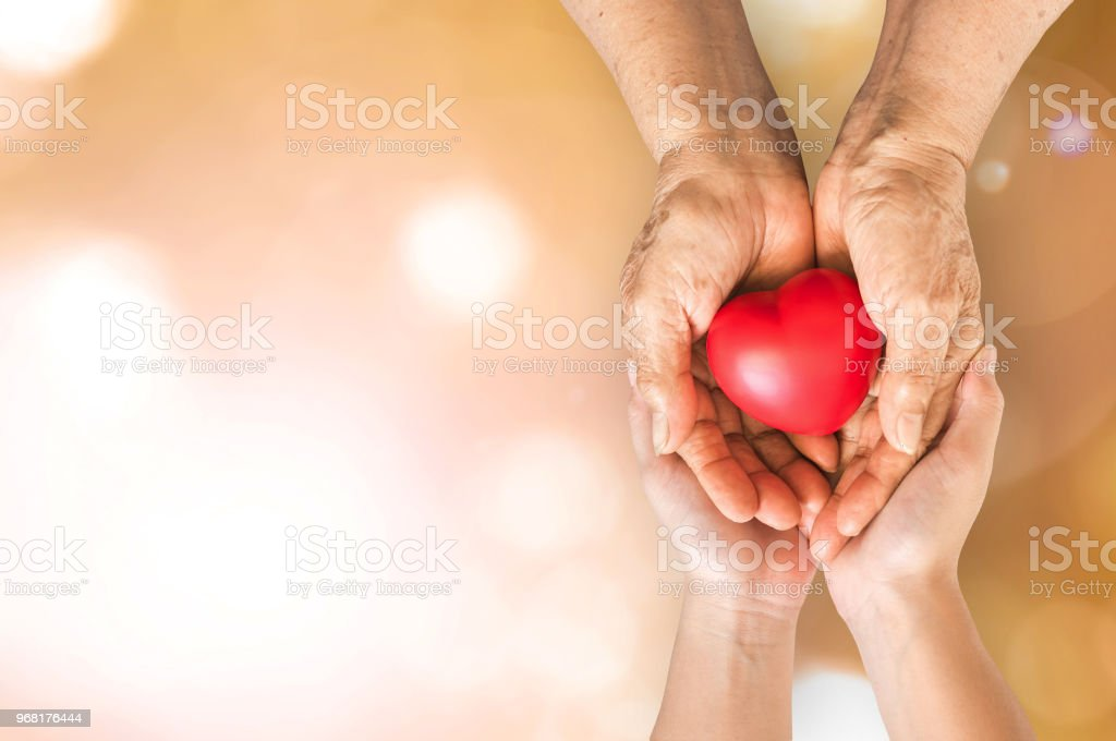 Elderly senior person or grandparent's hands with red heart  in support of nursing family caregiver for national hospice palliative care and family caregivers month concept stock photo