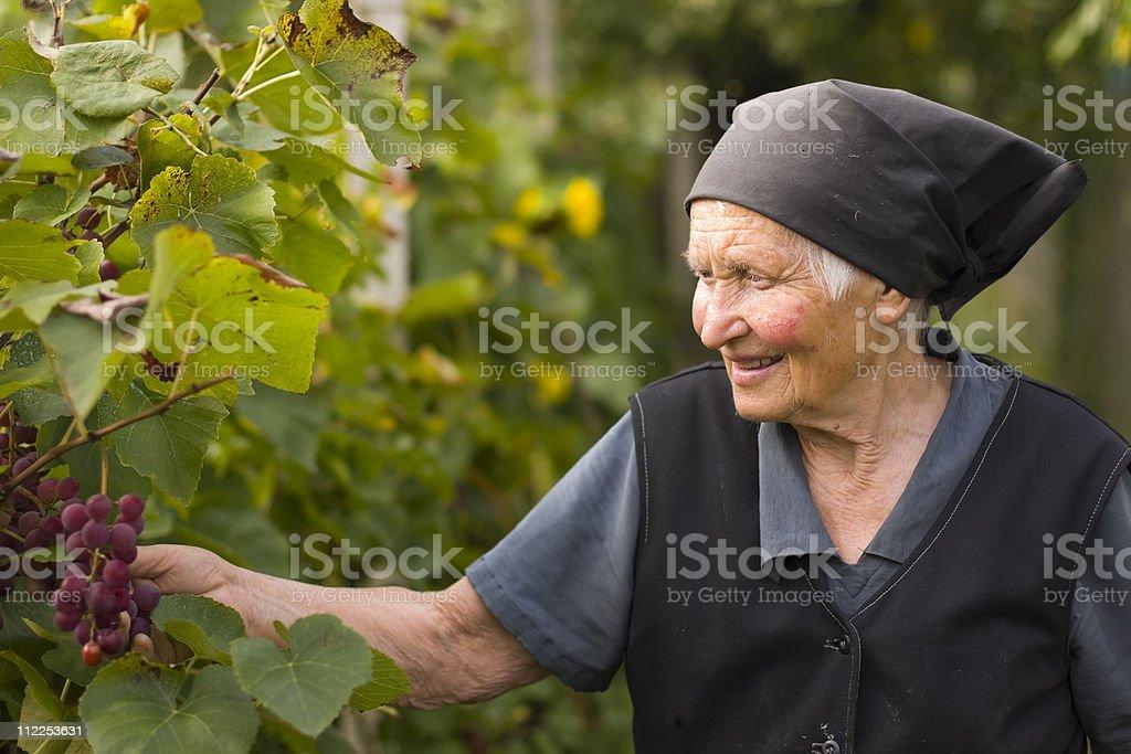 Elderly woman in the garden royalty-free stock photo