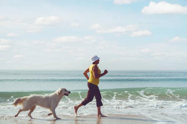 Elderly woman running with her golder retriever stock photo