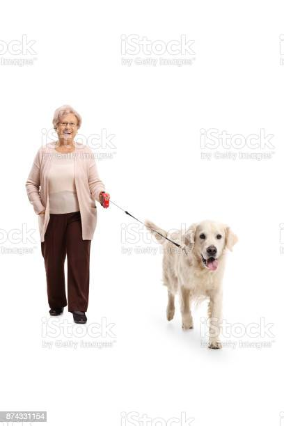 Elderly woman walking a dog picture id874331154?b=1&k=6&m=874331154&s=612x612&h=g0bnqlidq7g5lojndvpaa67bkkzgu5owo6kv2ukb8ig=