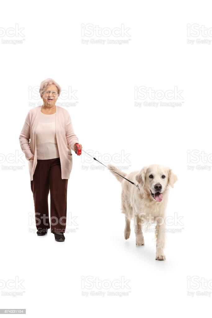 Elderly woman walking a dog stock photo