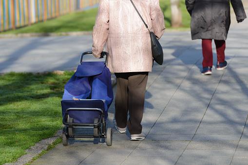 Mujer Anciana Con Una Bolsa Sobre Ruedas En La Calle Vista Trasera Foto de stock y más banco de imágenes de Adulto