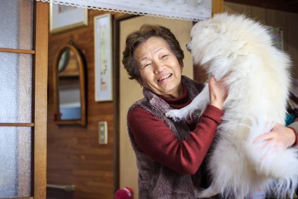 Ältere Frauen, die Hunde halten – Foto
