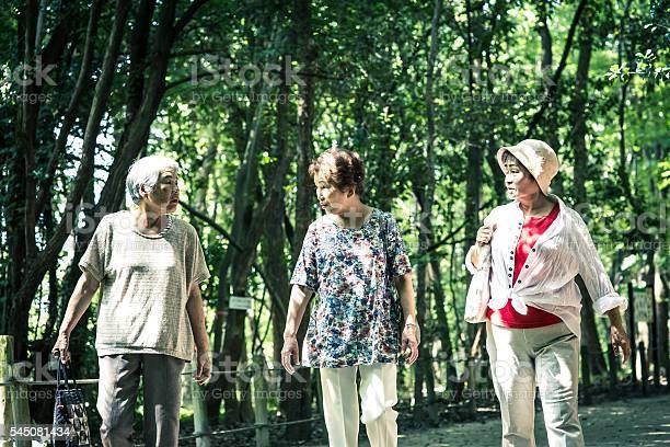 Elderly women who are walking in the nature picture id545081434?b=1&k=6&m=545081434&s=612x612&h=xu3wbjobdfr2cfospjm2ocqjqdnd6y cfuqywxbik3c=