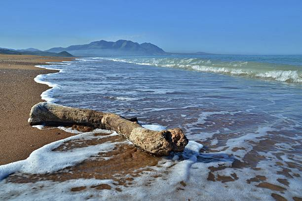 Elea beach, Greece stock photo