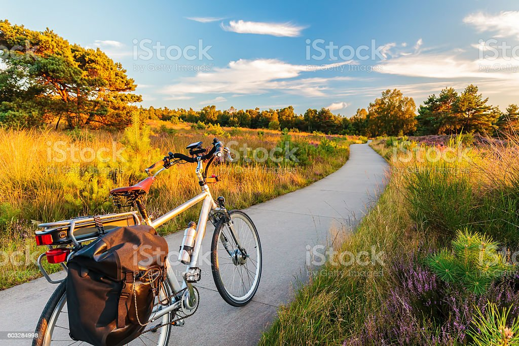 Electric bicycle in Dutch national park The Veluwe stock photo
