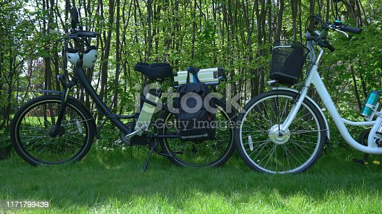 Electric bicycles in the park in sunny summer day with green trees background. Shot from the side. Unfiltered, with natural lighting. The view of the e motor and power battery.