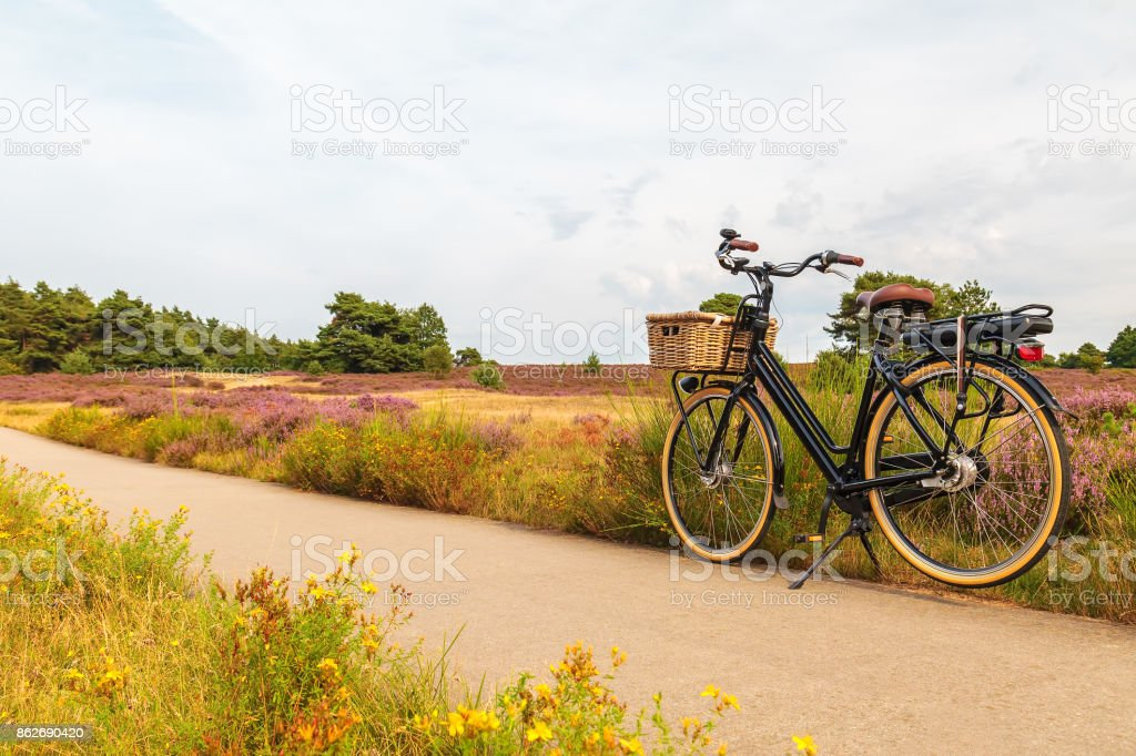 Electric black cargo bicycle with basket in Dutch national park The Veluwe stock photo