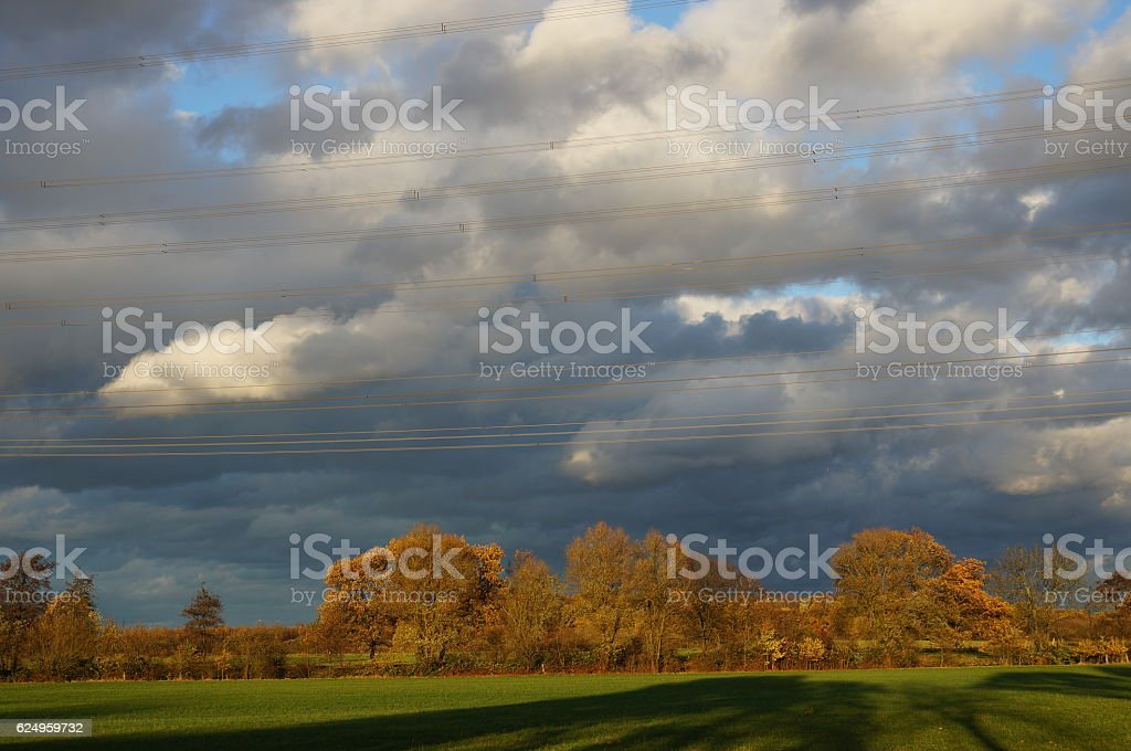 electric cables above green landscape stock photo