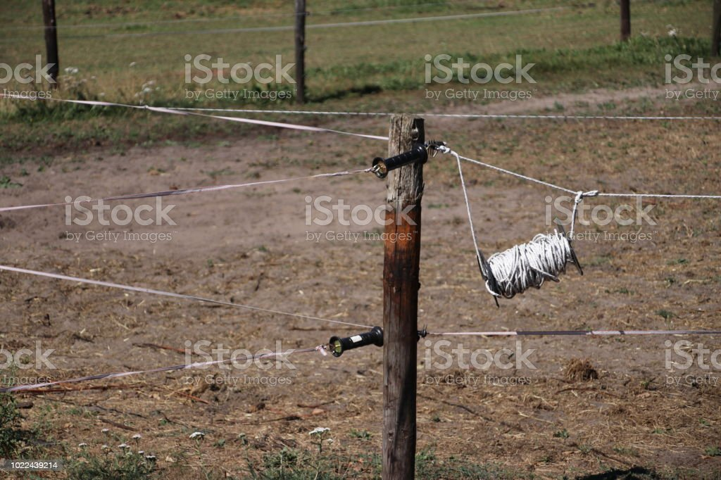 elektrische vee hek op een weide in Oldebroek, Nederland foto