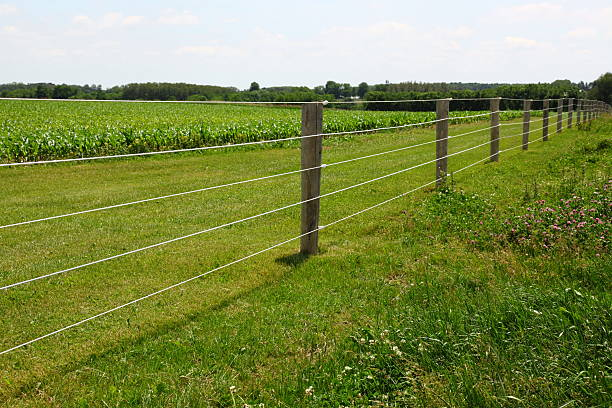 Royalty Free Electric Fence Pictures Images And Stock