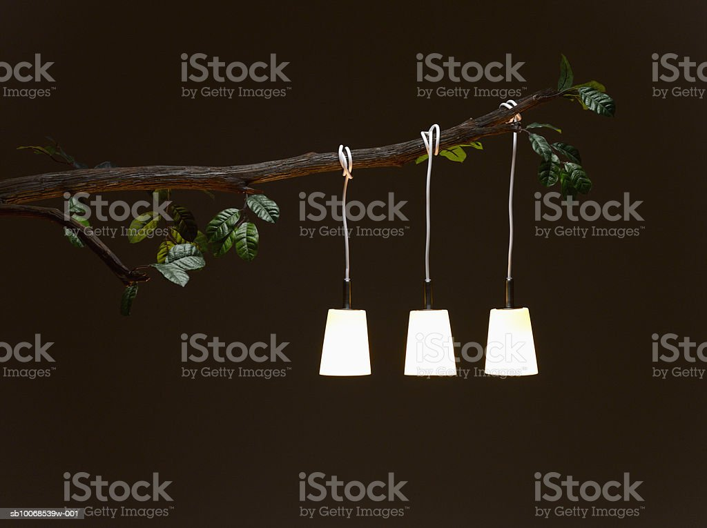 Electric lamp hanging from tree branch, illuminated at night royalty free stockfoto