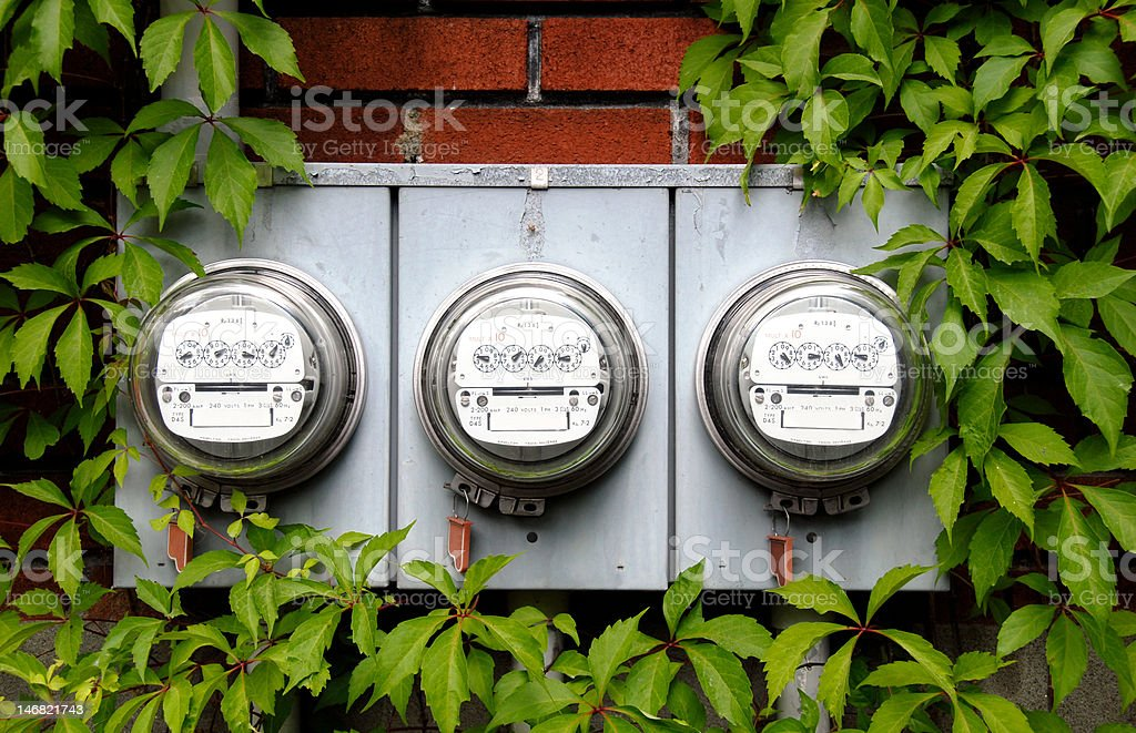Electric meters on brick wall surrounded by green leaves stock photo