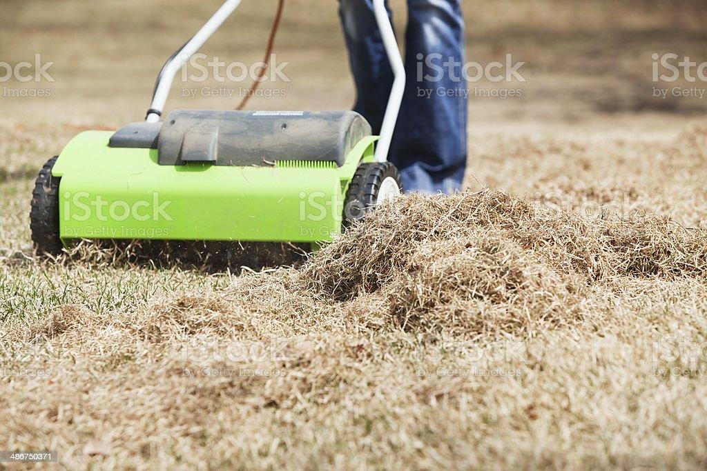 Electric Power Rake Dethatching Spring Yard Grass royalty-free stock photo