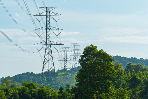 Electric Power Transmission Lines over forest
