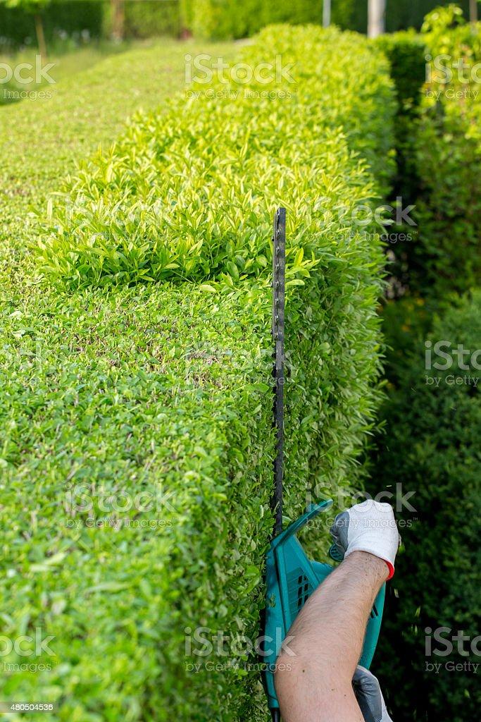 Electric saw stock photo