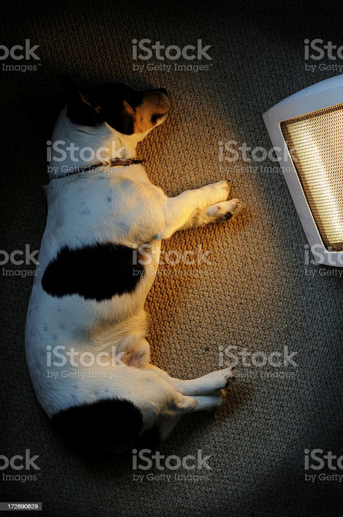 Electric Warmth stock photo
