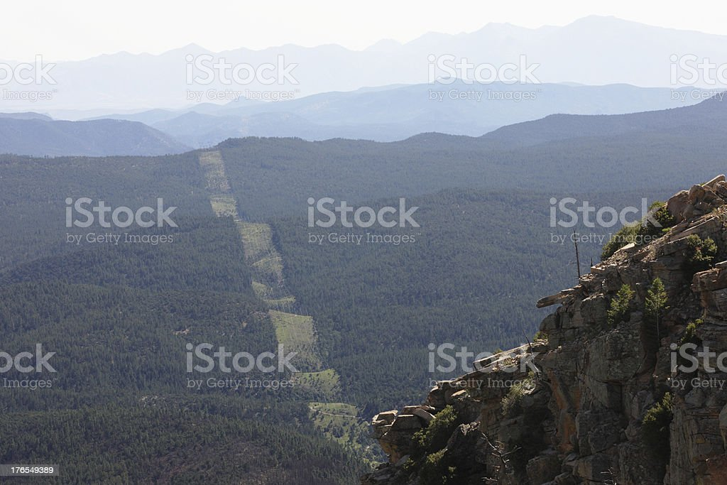 Electrical Power Line Forest Swath royalty-free stock photo