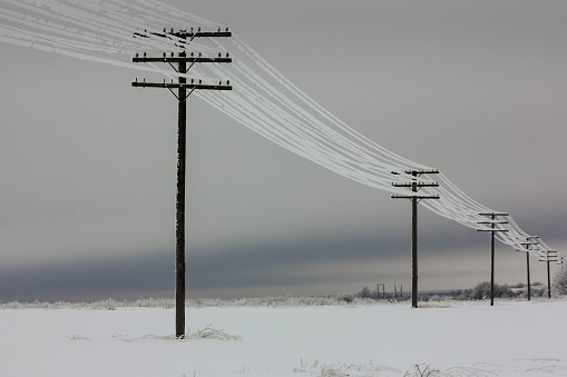 Electrical power lines with hoarfrost on the wooden electric poles