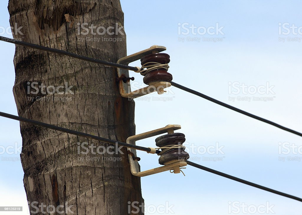 Electricity in a palm tree royalty-free stock photo
