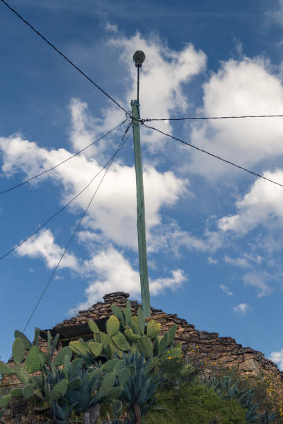 Electricity post and cactus stock photo