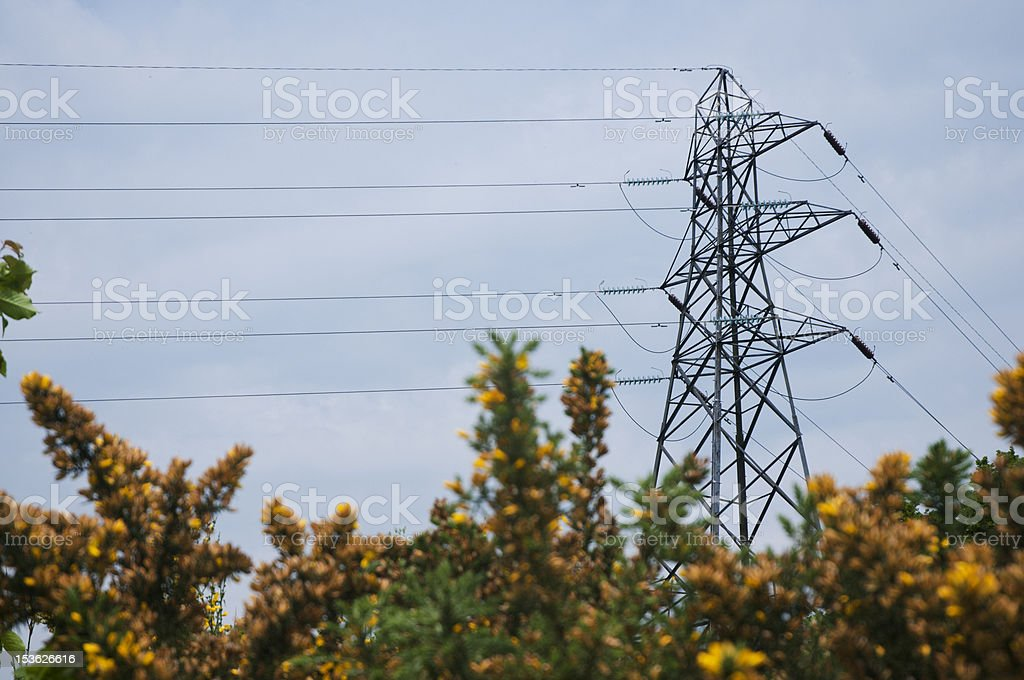 electricity pylon and power cables stock photo
