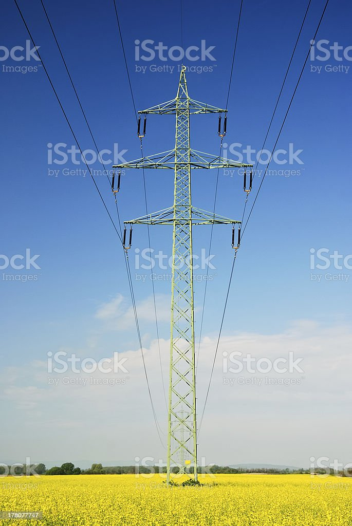 electricity pylon ant wires at a canola field stock photo