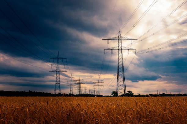 Electricity Pylon in a wheat field stock photo