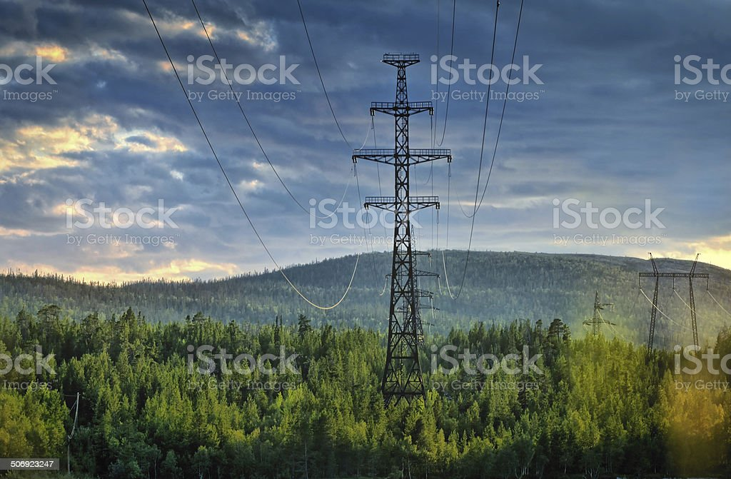 Electricity pylons cutting through forest stock photo