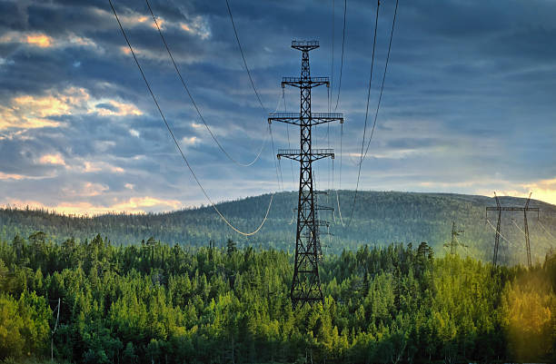 electricity pylons cutting through forest - hoogspanningsmast stockfoto's en -beelden