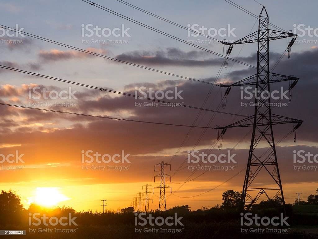 Electricity Pylons in Field at Dusk stock photo